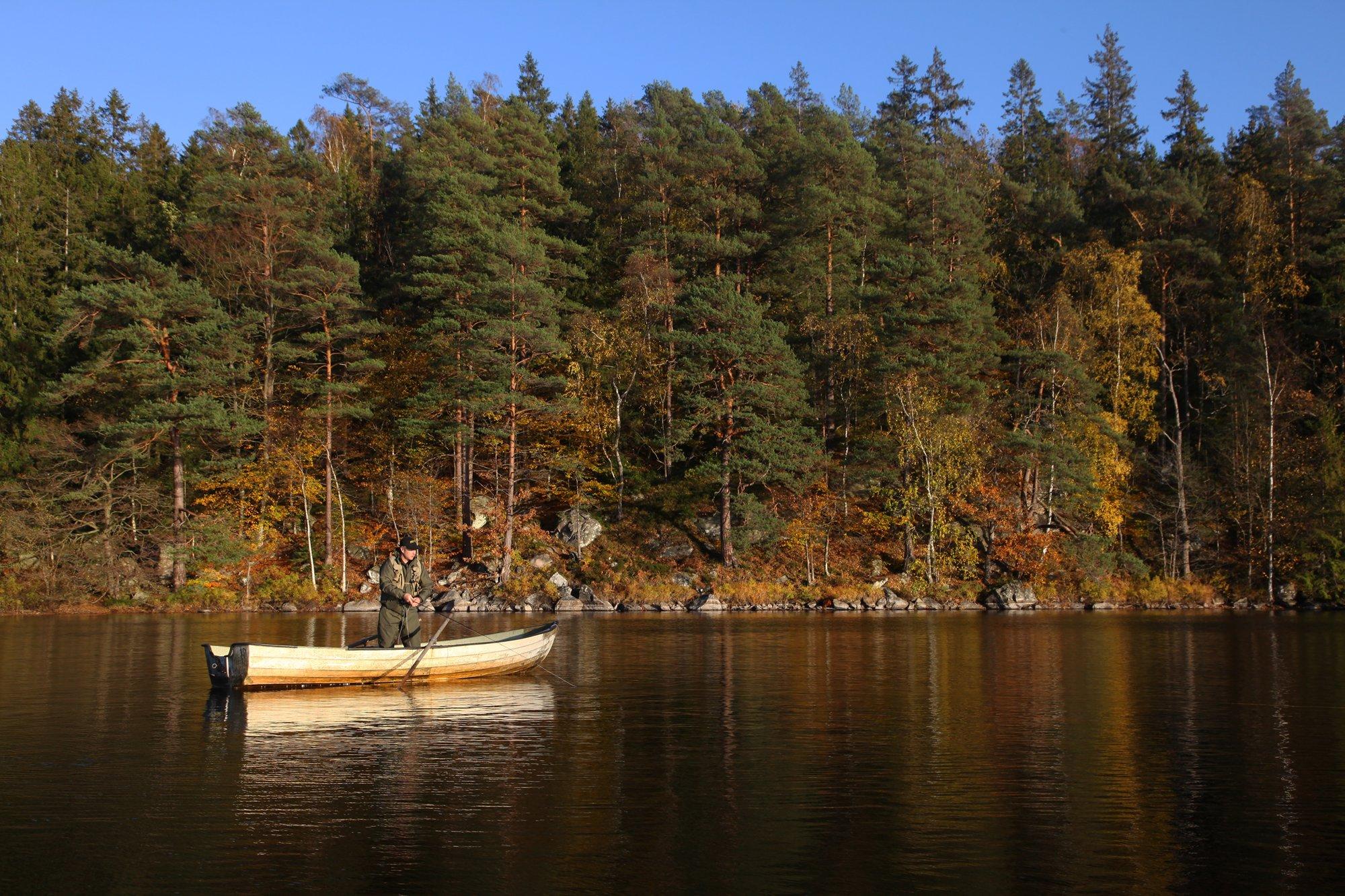 Zweeds forellenmeer