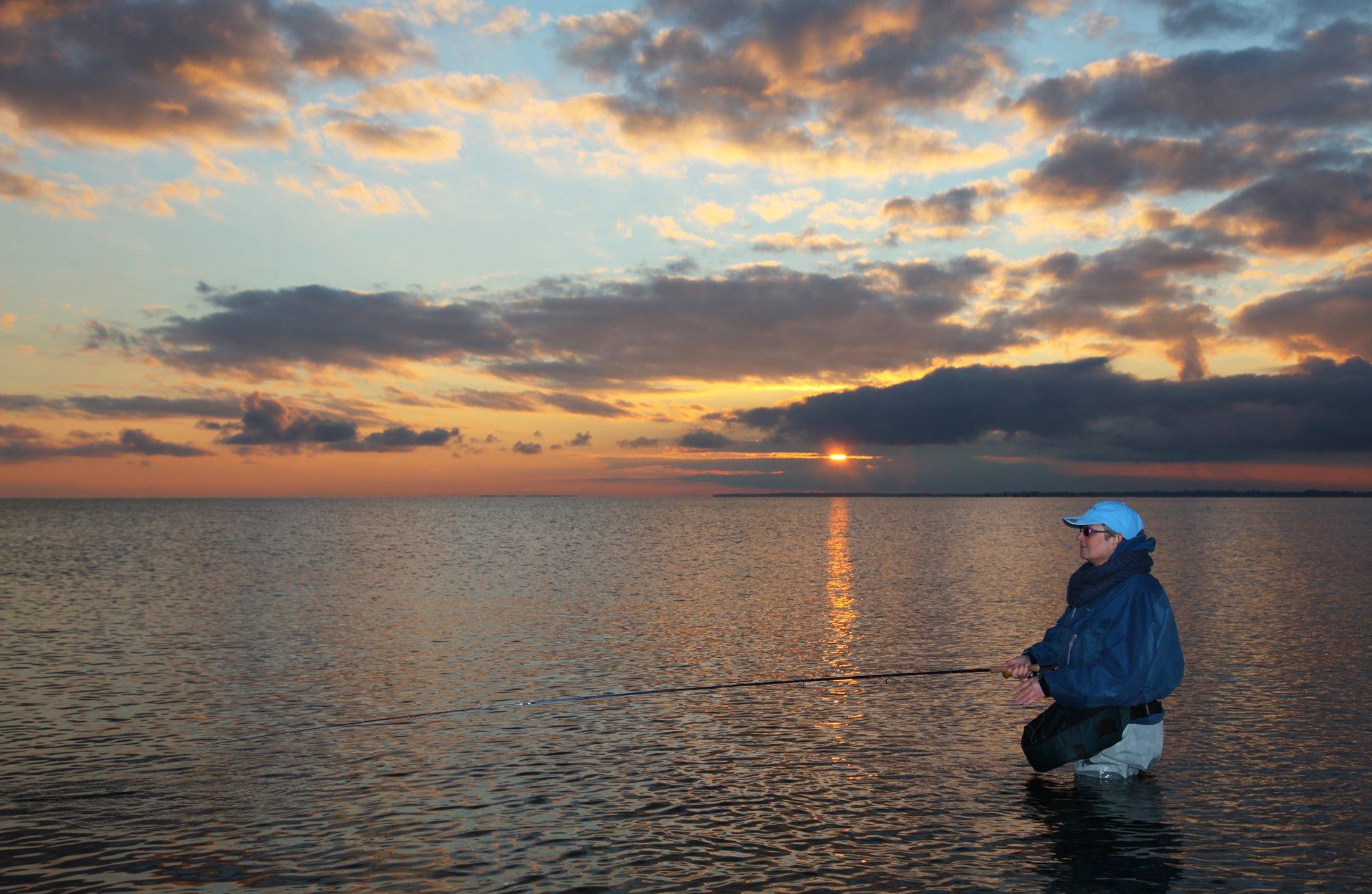 Denemarken zeeforelvissen